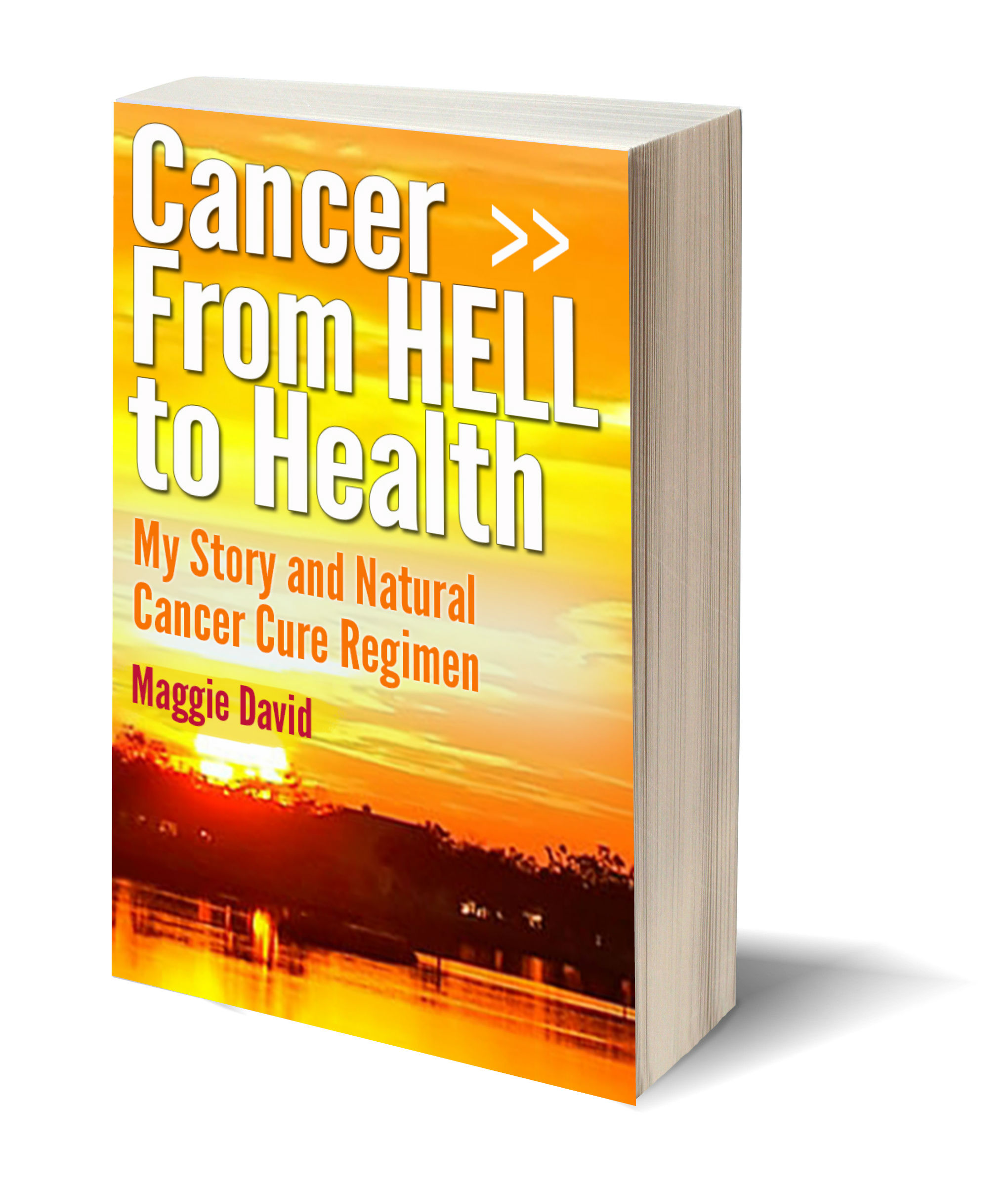Cancer from hell to health 3D-Book-Template.jpg