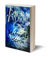 Midnight storm 3D-Book-Template.jpg