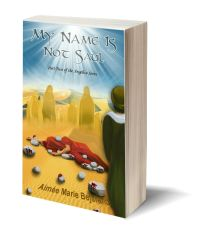 My Name is Not Saul 3D-Book-Template