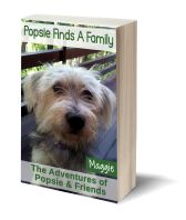 Popsie finds a family 3D-Book-Template