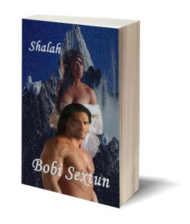 Shalah 3D-Book-Template.jpg