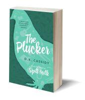 The Plucker 3D-Book-Template