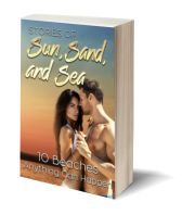 Sun sand and sea 3D-Book-Template