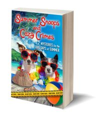 Summer Snoops 3D-Book-Template.jpg