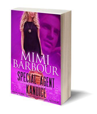 Special Agent Kandice 3D-Book-Template.jpg