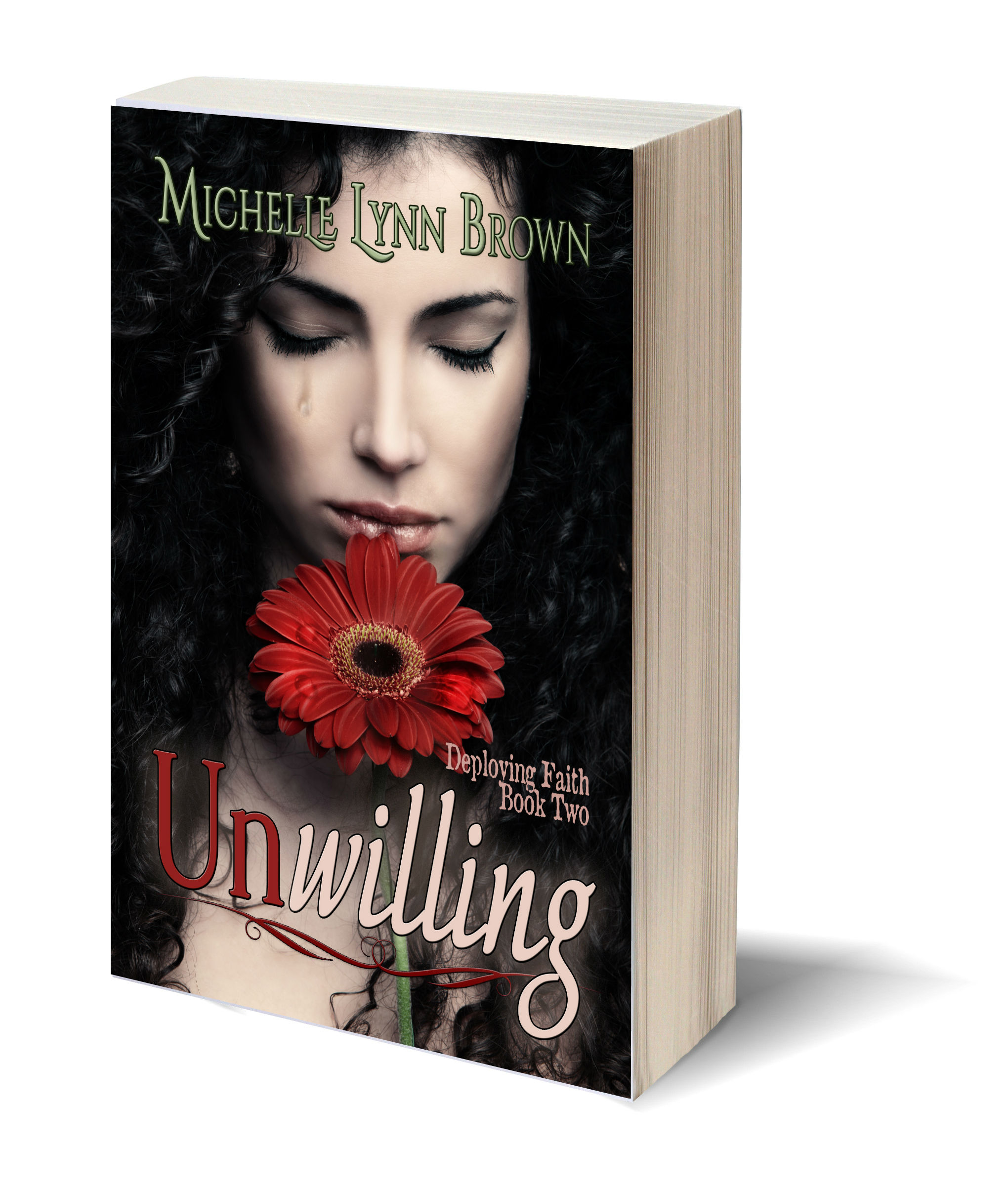 Unwilling 3D-Book-Template