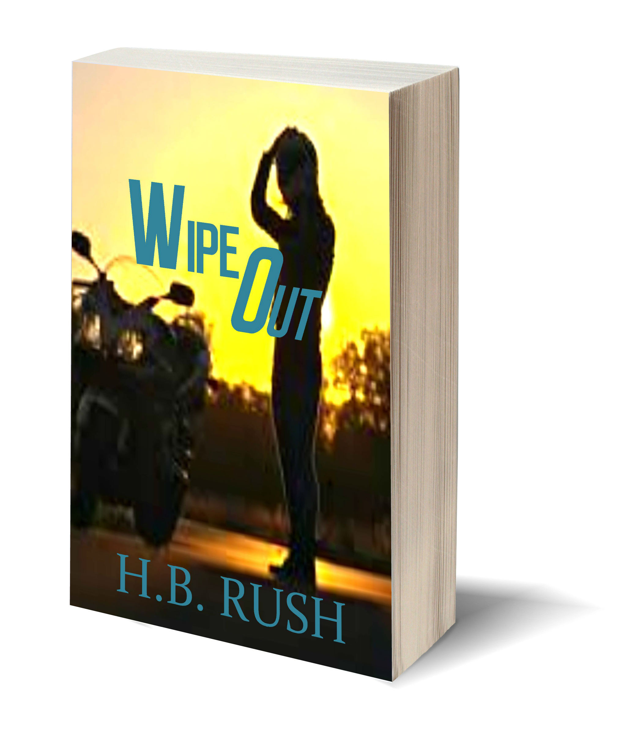 Wipe Out 3D-Book-Template