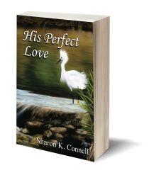 His Perfect Love 3D-Book-Template.jpg