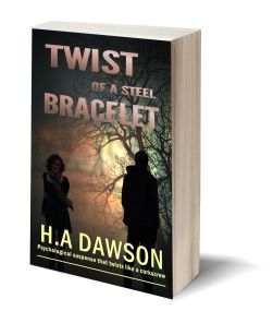 Twist Of A Steel Bracelet 3D-Book-Template.jpg