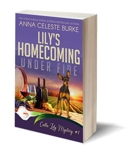 Lily's Homecoming Under Fire NEW 3D-Book-Template.jpg