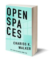Open Spaces 3D-Book-Template.jpg