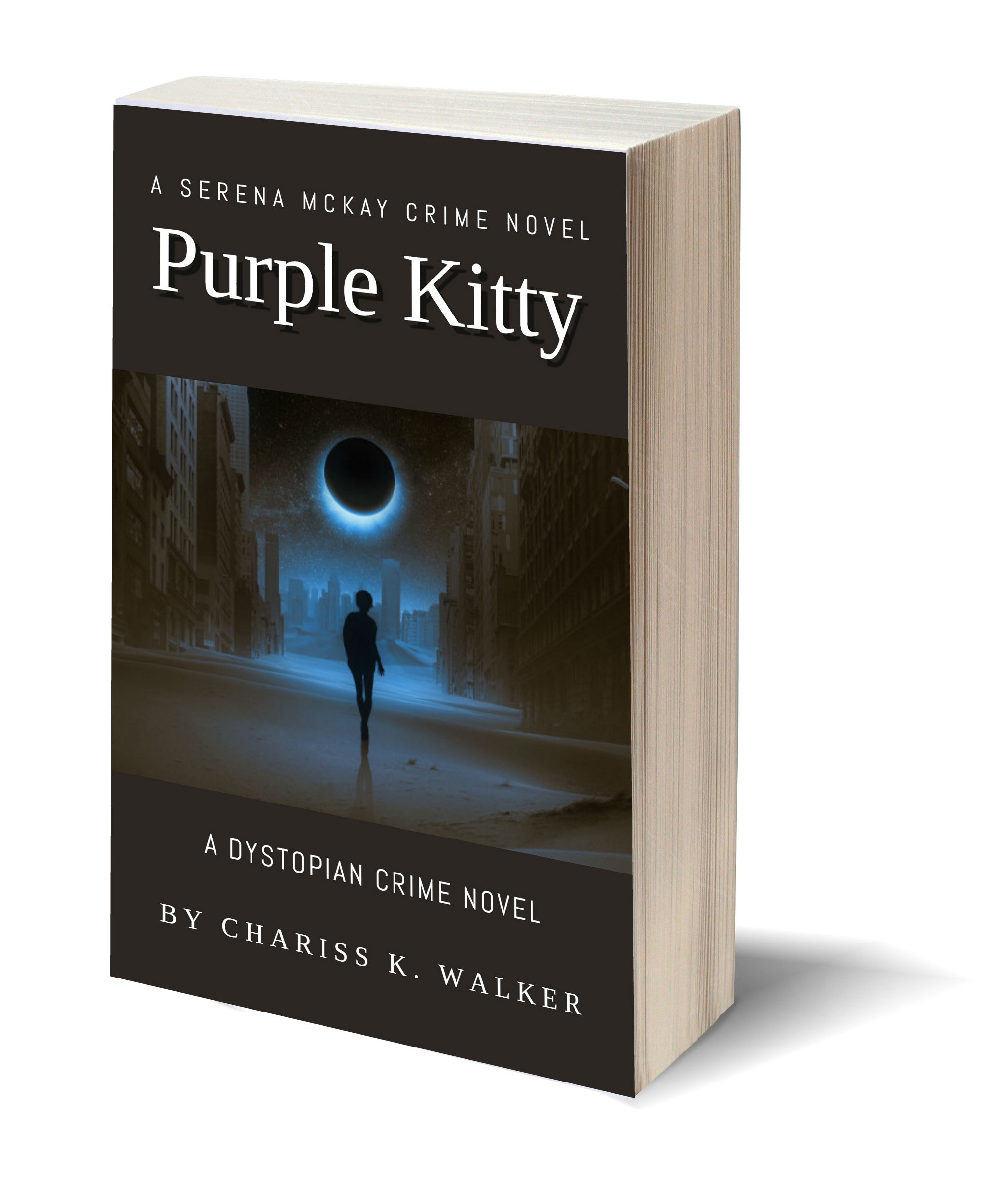 Purple Kitty 3D-Book-Template.jpg
