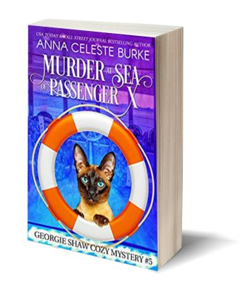 Murder at sea of passenenger x USA 2019 3D-Book-Template.jpg
