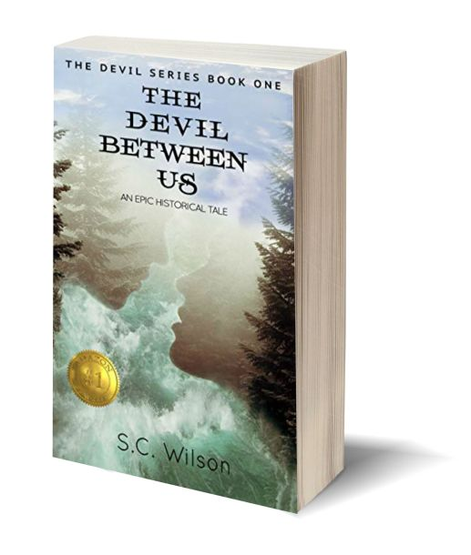 The Devil Between Us NEW 3D-Book-Template.jpg