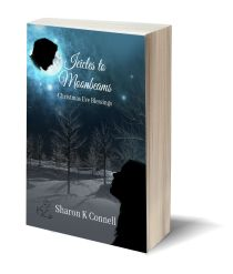 Icicles to Moonbeams 3D-Book-Template