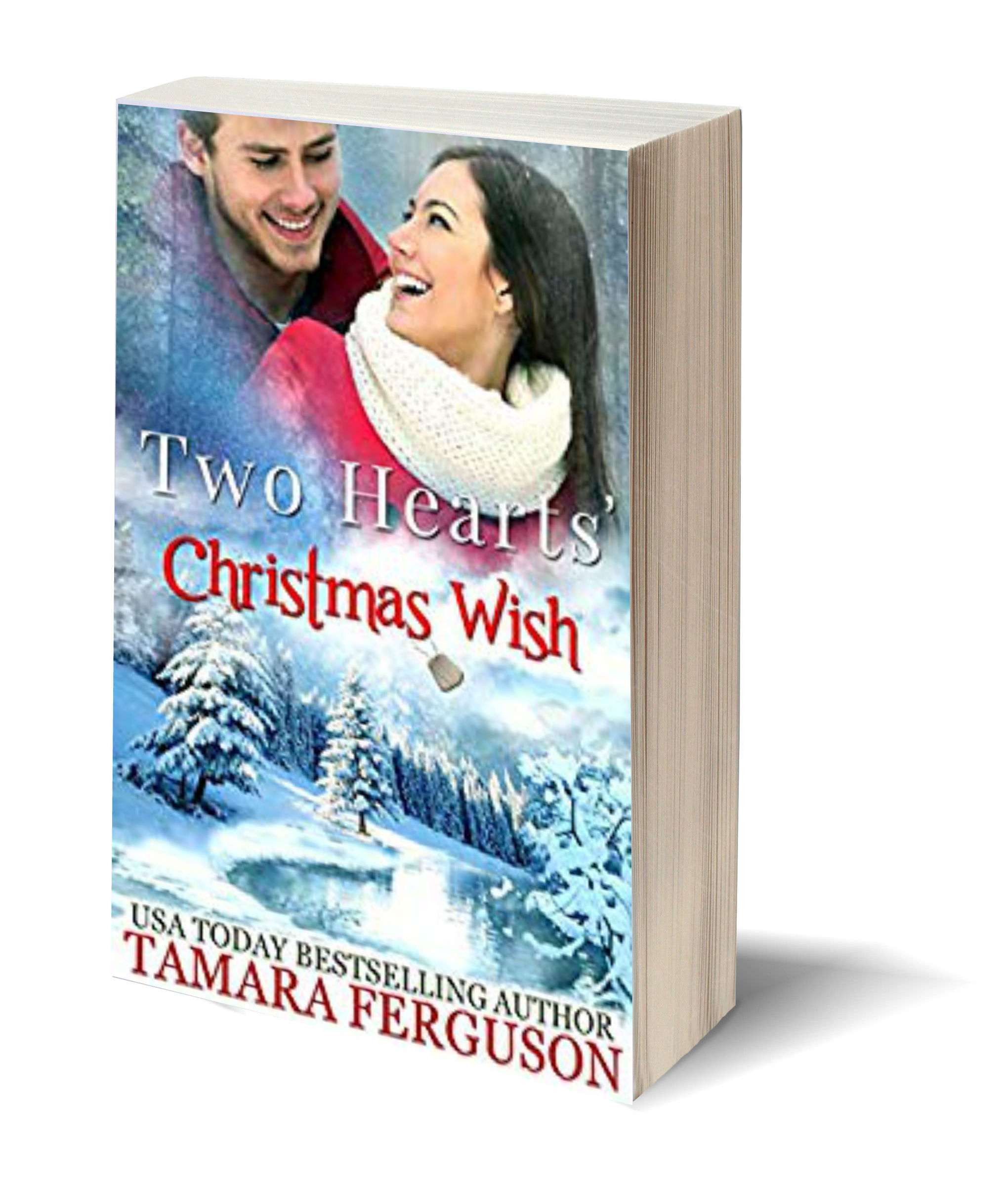 Two hearts christmas wish USA 3D-Book-Template.jpg