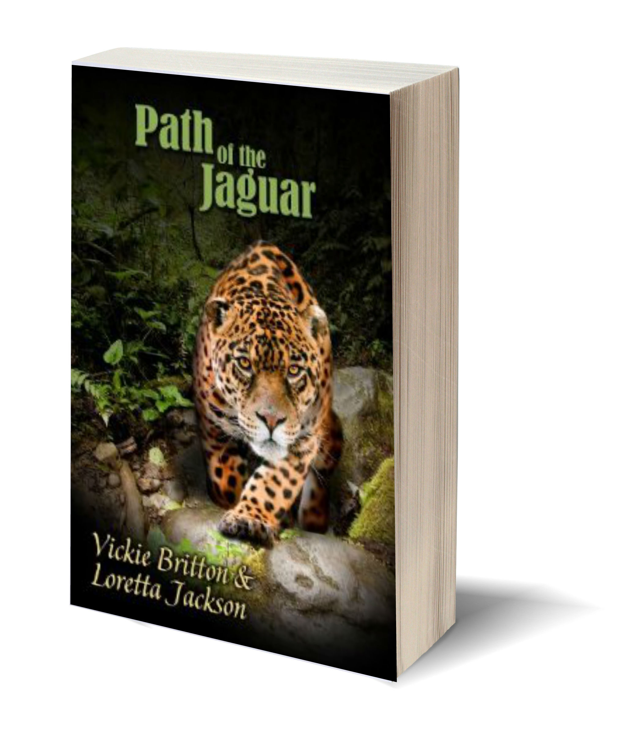 Path of the Jaguar 3D-Book-Template