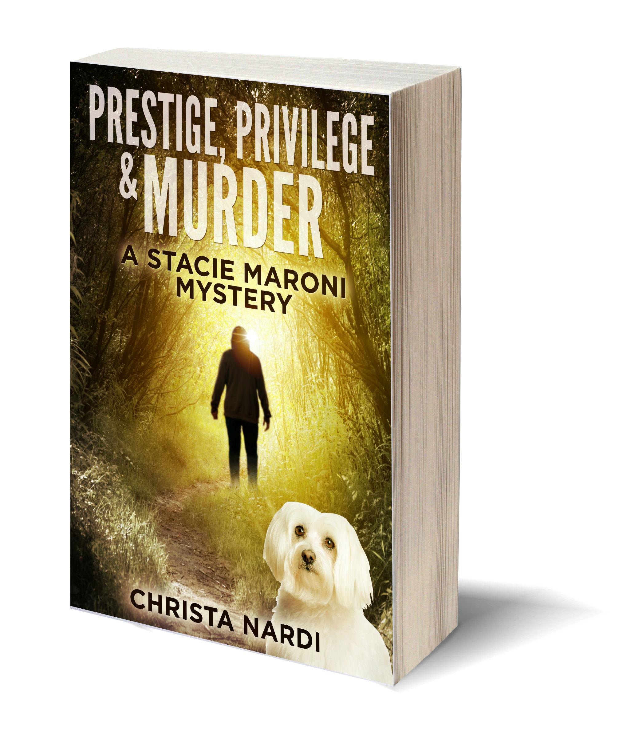 Prestige Privelege Murder 3D-Book-Template