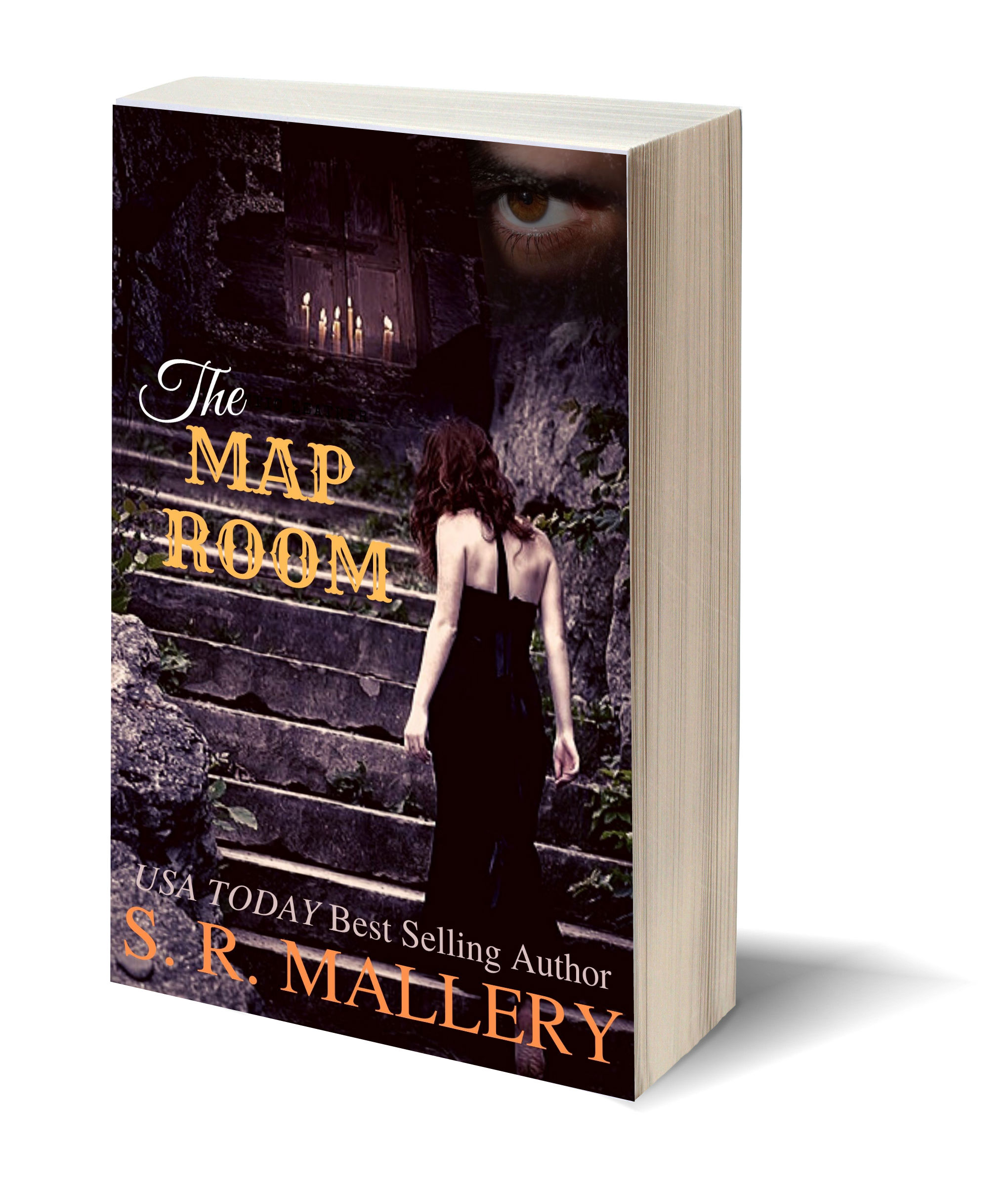 The Map Room NEW 3D-Book-Template
