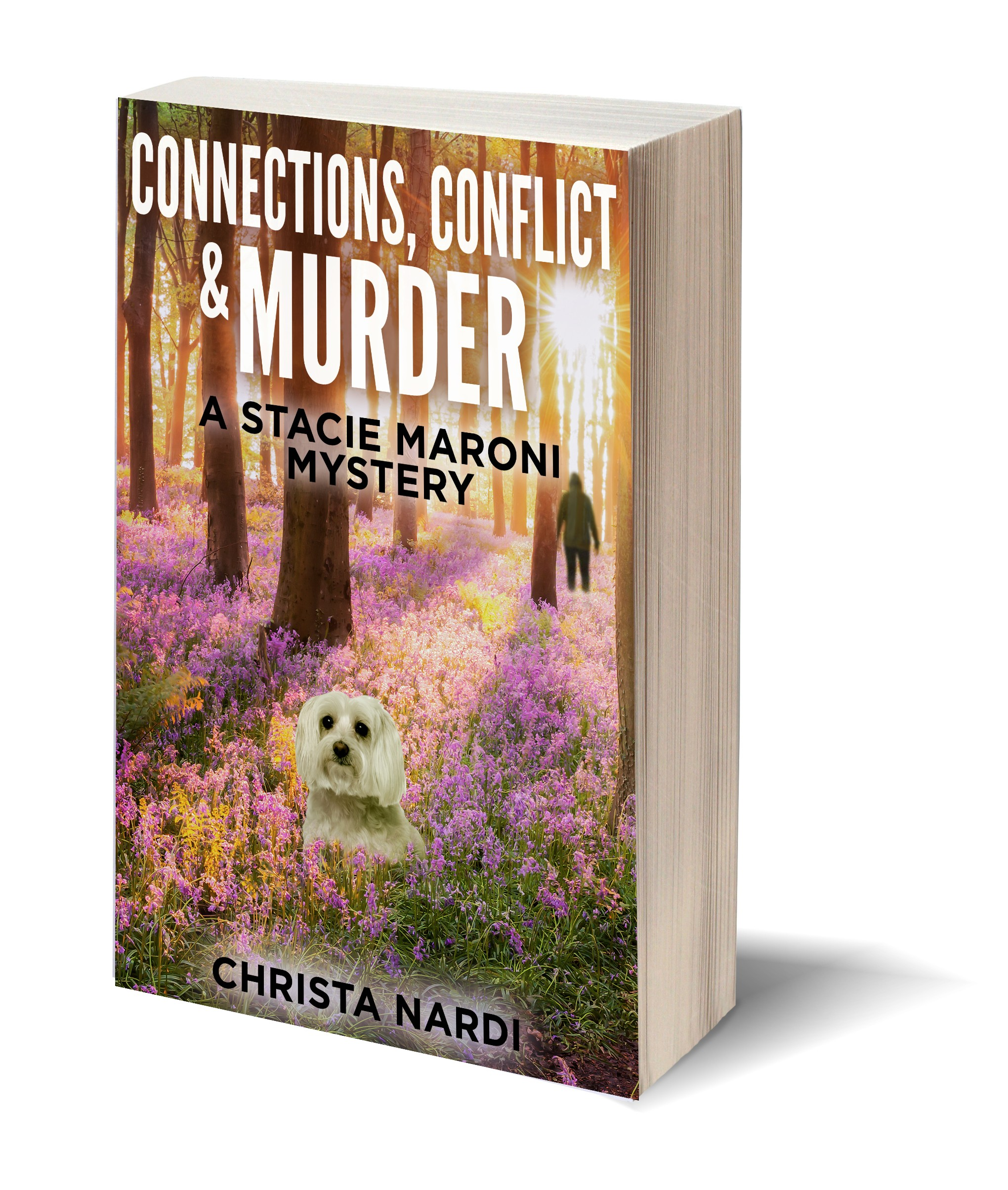 Connections Conflict & Murder 3D-Book-Template