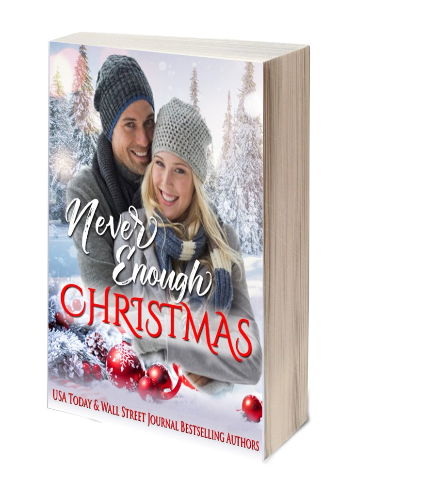 This image has an empty alt attribute; its file name is never-enough-christmas-3d-book-template-2.jpg